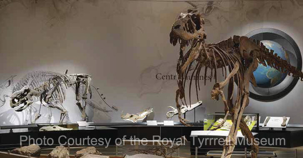 Photo Courtesy of the Royal Tyrrrell Museum watermark