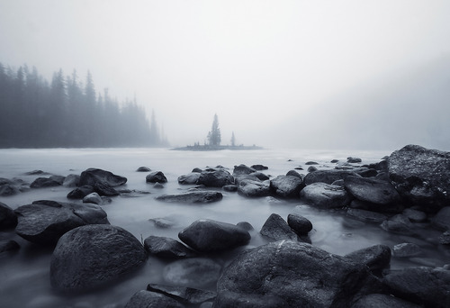 Misty Morning in Jasper by by Elizabeth Hak