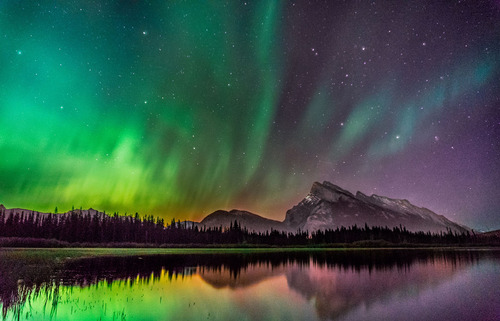 Mount Rundle Aurora by Shane Gier